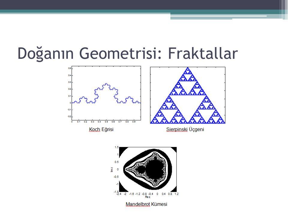 Doğanın Geometrisi: Fraktallar