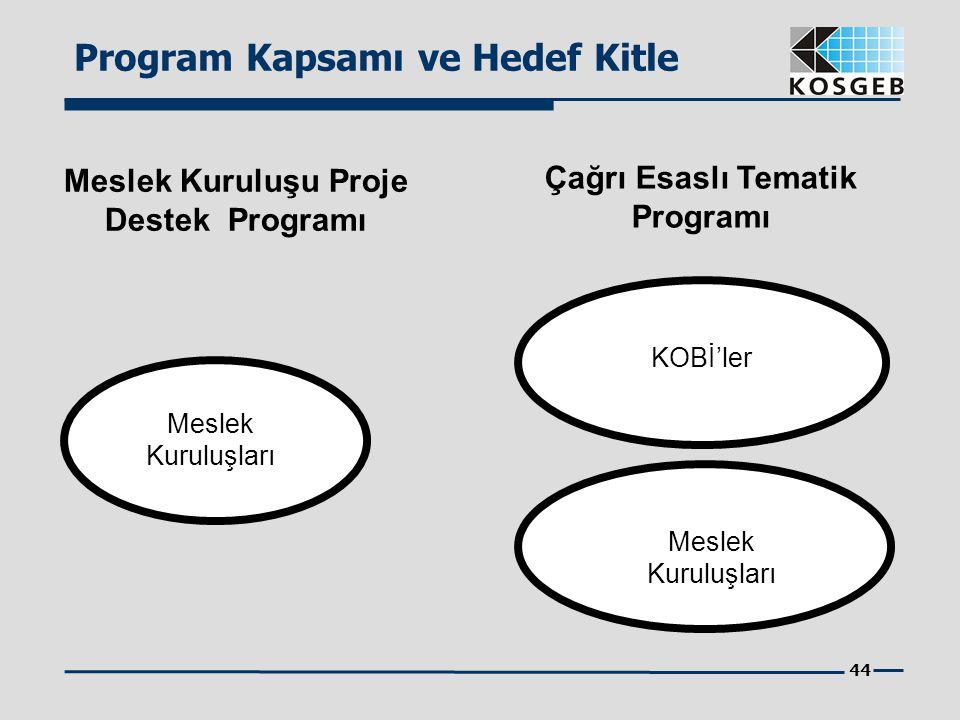 44 Program Kapsamı ve Hedef Kitle Meslek Kuruluşu Proje Destek Programı Çağrı Esaslı Tematik Programı Meslek Kuruluşları KOBİ'ler Meslek Kuruluşları