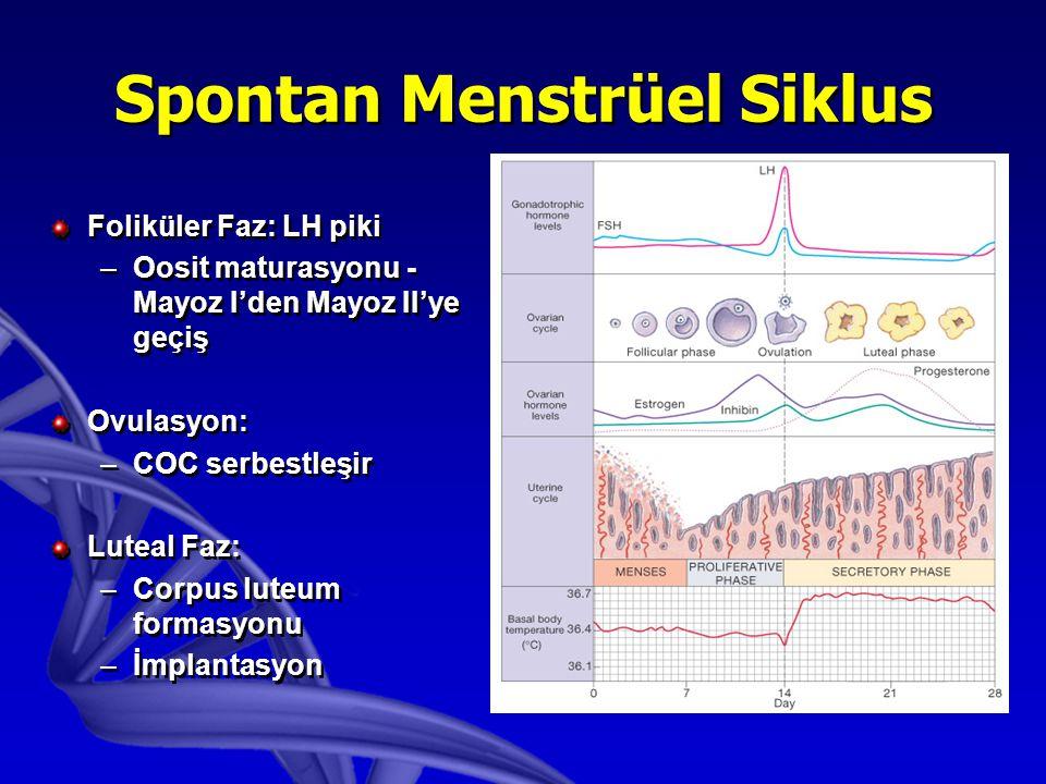 Spontan Menstrüel Siklus Foliküler Faz: LH piki –Oosit maturasyonu - Mayoz I'den Mayoz II'ye geçiş Ovulasyon: –COC serbestleşir Luteal Faz: –Corpus luteum formasyonu –İmplantasyon Foliküler Faz: LH piki –Oosit maturasyonu - Mayoz I'den Mayoz II'ye geçiş Ovulasyon: –COC serbestleşir Luteal Faz: –Corpus luteum formasyonu –İmplantasyon