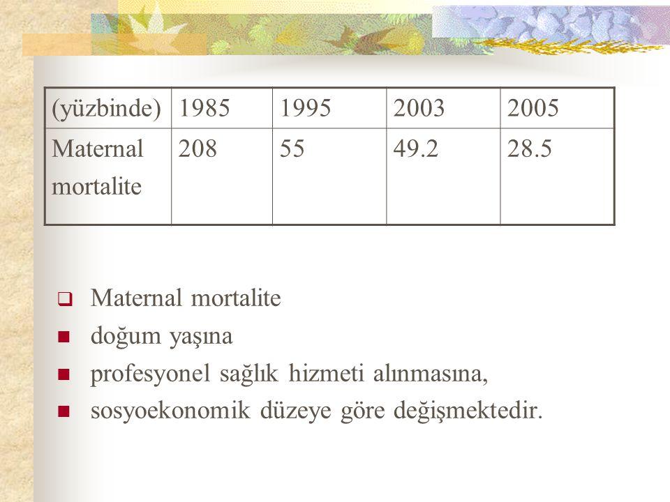  Maternal mortalite doğum yaşına profesyonel sağlık hizmeti alınmasına, sosyoekonomik düzeye göre değişmektedir. (yüzbinde)1985199520032005 Maternal