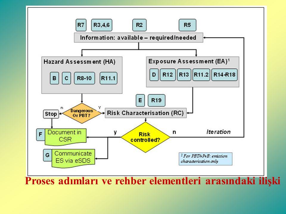 Proses adımları ve rehber elementleri arasındaki ilişki