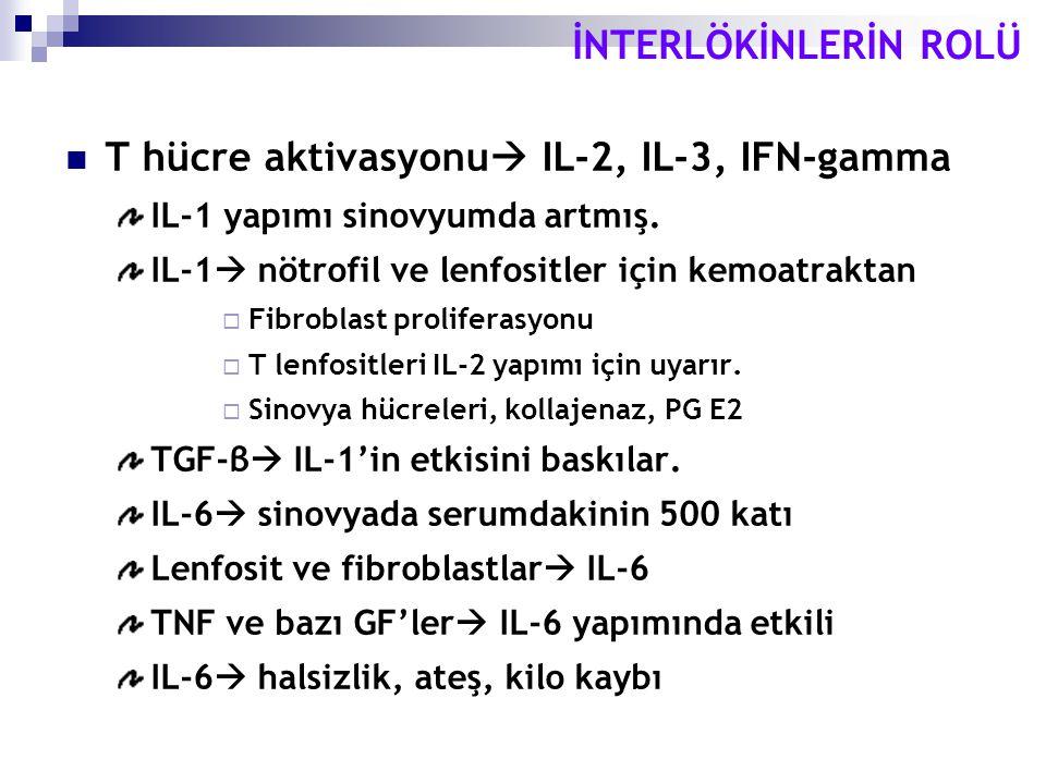 İNTERLÖKİNLERİN ROLÜ T hücre aktivasyonu  IL-2, IL-3, IFN-gamma IL-1 yapımı sinovyumda artmış. IL-1  nötrofil ve lenfositler için kemoatraktan  Fib