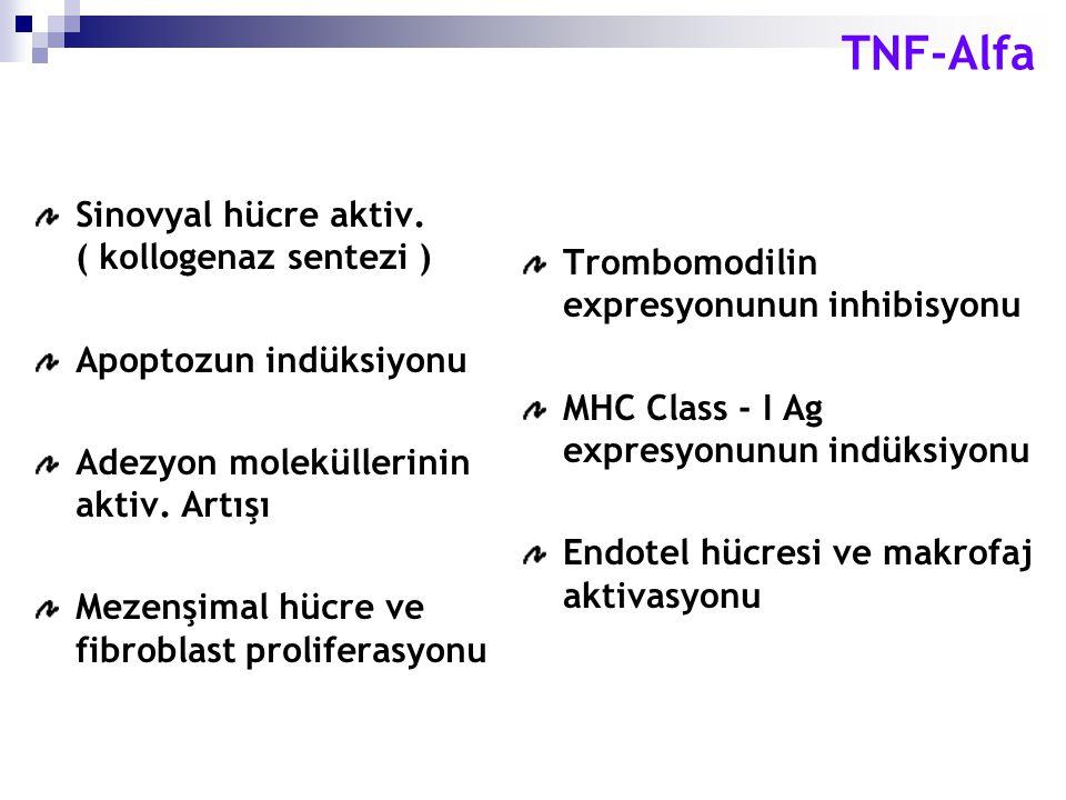 Sinovyal hücre aktiv. ( kollogenaz sentezi ) Apoptozun indüksiyonu Adezyon moleküllerinin aktiv. Artışı Mezenşimal hücre ve fibroblast proliferasyonu