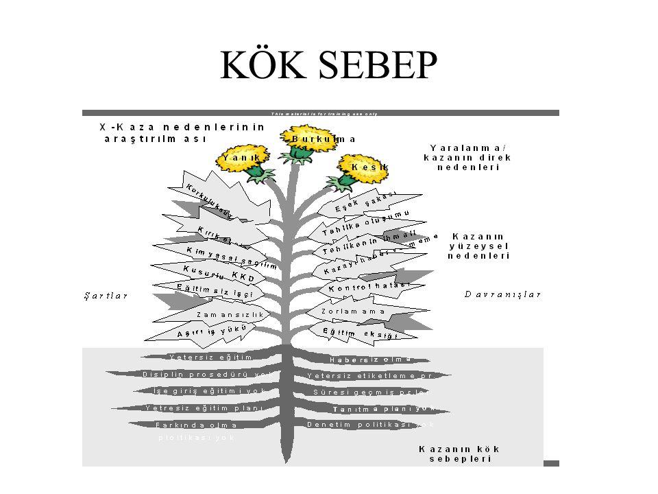 KÖK SEBEP