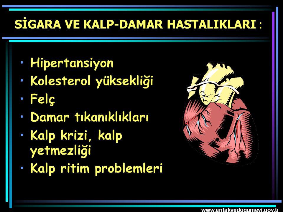 www.antakyadogumevi.gov.tr SİGARA VE KALP-DAMAR HASTALIKLARI : Hipertansiyon Kolesterol yüksekliği Felç Damar tıkanıklıkları Kalp krizi, kalp yetmezli