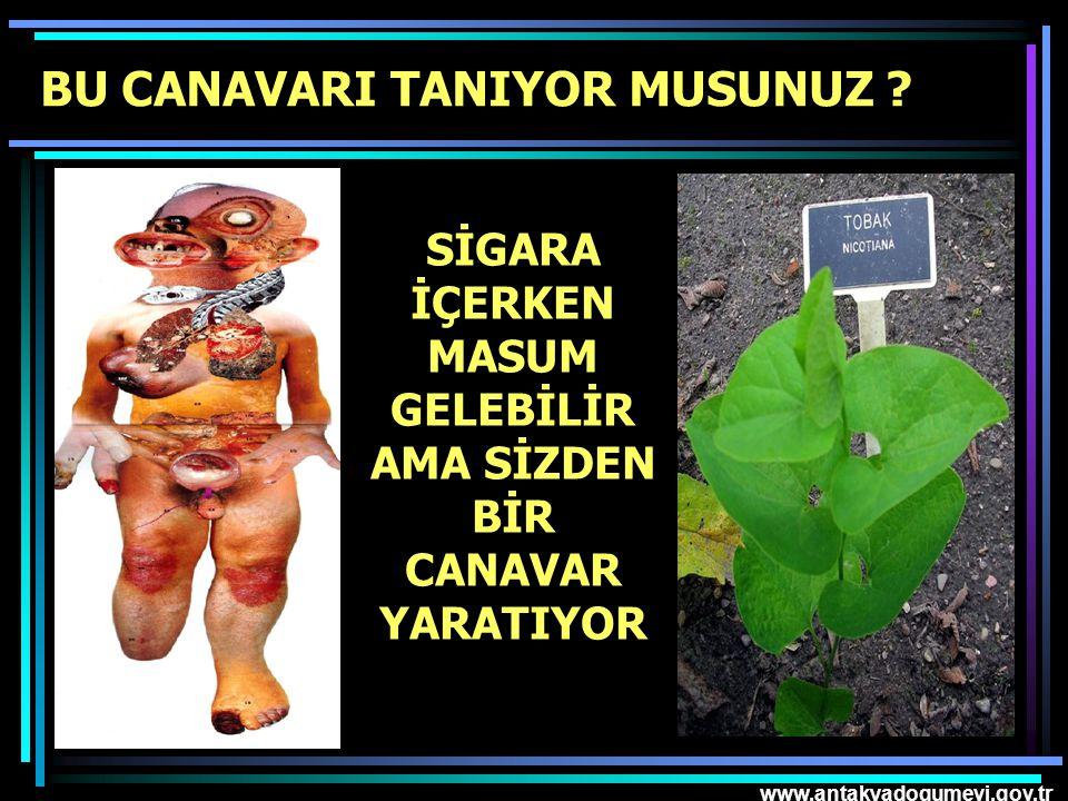 www.antakyadogumevi.gov.tr SİGARA İÇERKEN MASUM GELEBİLİR AMA SİZDEN BİR CANAVAR YARATIYOR BU CANAVARI TANIYOR MUSUNUZ ?