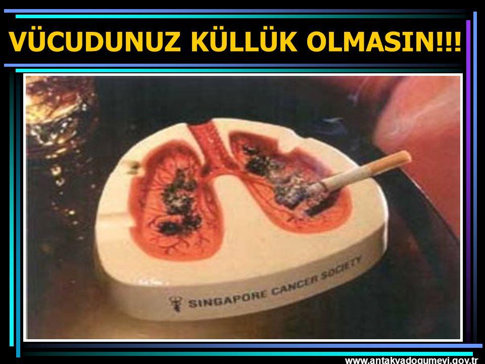 www.antakyadogumevi.gov.tr VÜCUDUNUZ KÜLLÜK OLMASIN!!!