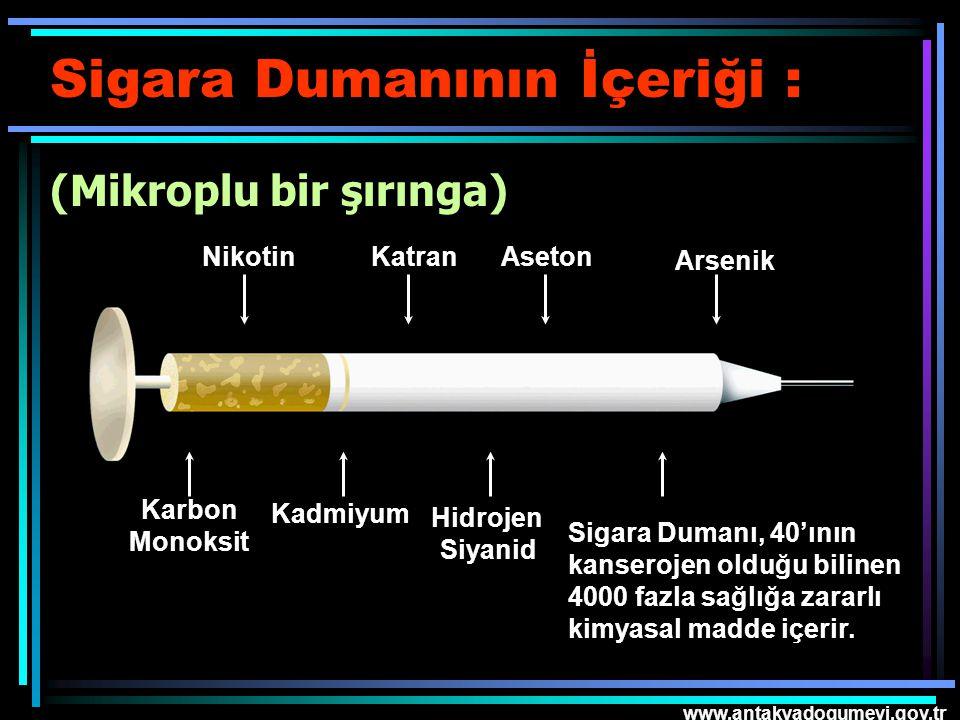 www.antakyadogumevi.gov.tr Sigara Dumanının İçeriği : (Mikroplu bir şırınga) Nikotin Karbon Monoksit KatranAseton Kadmiyum Arsenik Sigara Dumanı, 40'ı
