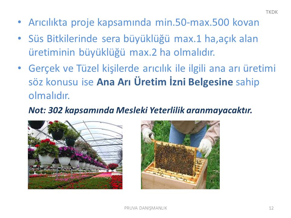 Arıcılıkta proje kapsamında min.50-max.500 kovan Süs Bitkilerinde sera büyüklüğü max.1 ha,açık alan üretiminin büyüklüğü max.2 ha olmalıdır. Gerçek ve