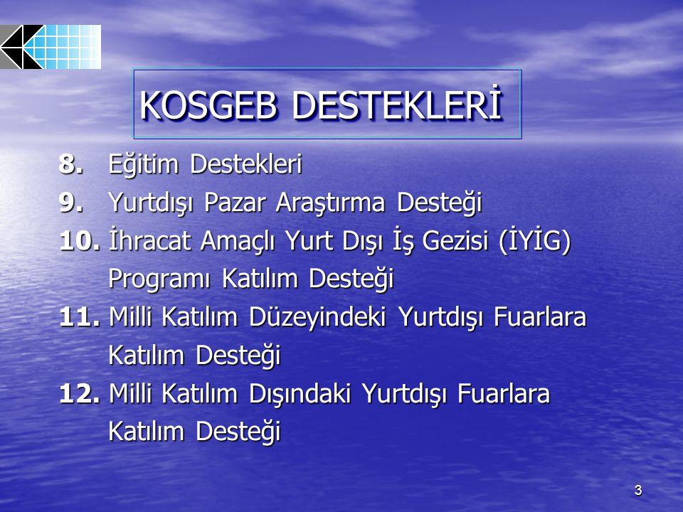84 23- YABANCI DANIŞMAN DESTEĞİ PROGRAMI (NMCP) KİMLER YARARLANABİLİR.