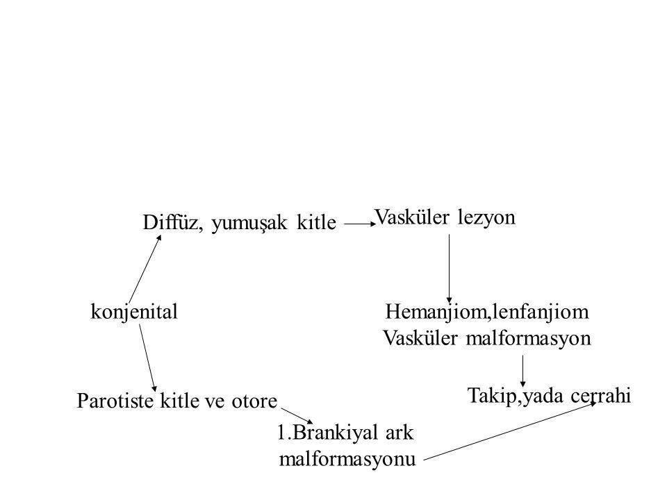 konjenital Diffüz, yumuşak kitle Vasküler lezyon Hemanjiom,lenfanjiom Vasküler malformasyon Parotiste kitle ve otore 1.Brankiyal ark malformasyonu Takip,yada cerrahi