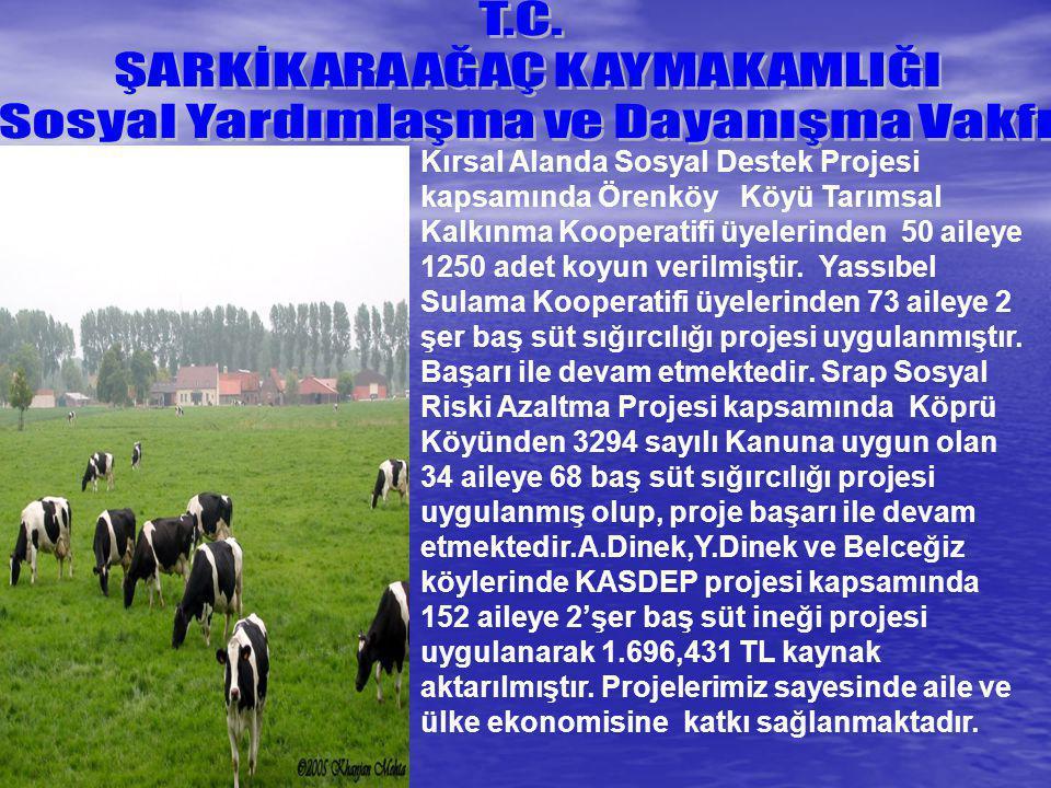 Kırsal Alanda Sosyal Destek Projesi kapsamında Örenköy Köyü Tarımsal Kalkınma Kooperatifi üyelerinden 50 aileye 1250 adet koyun verilmiştir. Yassıbel
