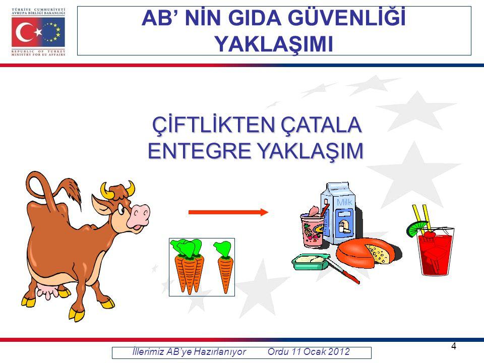 Türkiye Geneli-Sektör Bazında Dağılımı İllerimiz AB'ye Hazırlanıyor Ordu 11 Ocak 2012 15