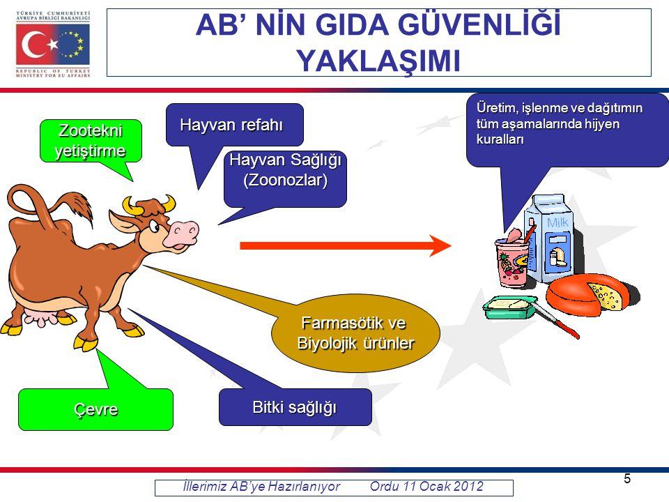 İllerimiz AB'ye Hazırlanıyor Ordu 11 Ocak 2012 5 Hayvan Sağlığı (Zoonozlar) Zootekniyetiştirme Farmasötik ve Biyolojik ürünler Bitki sağlığı Hayvan refahı Üretim, işlenme ve dağıtımın tüm aşamalarında hijyen kuralları Çevre AB' NİN GIDA GÜVENLİĞİ YAKLAŞIMI