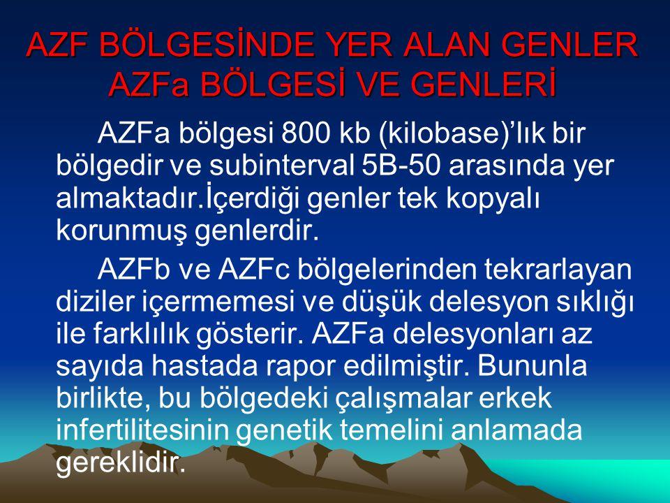 AZF BÖLGESİNDE YER ALAN GENLER AZFa BÖLGESİ VE GENLERİ AZFa bölgesi 800 kb (kilobase)'lık bir bölgedir ve subinterval 5B-50 arasında yer almaktadır.İç
