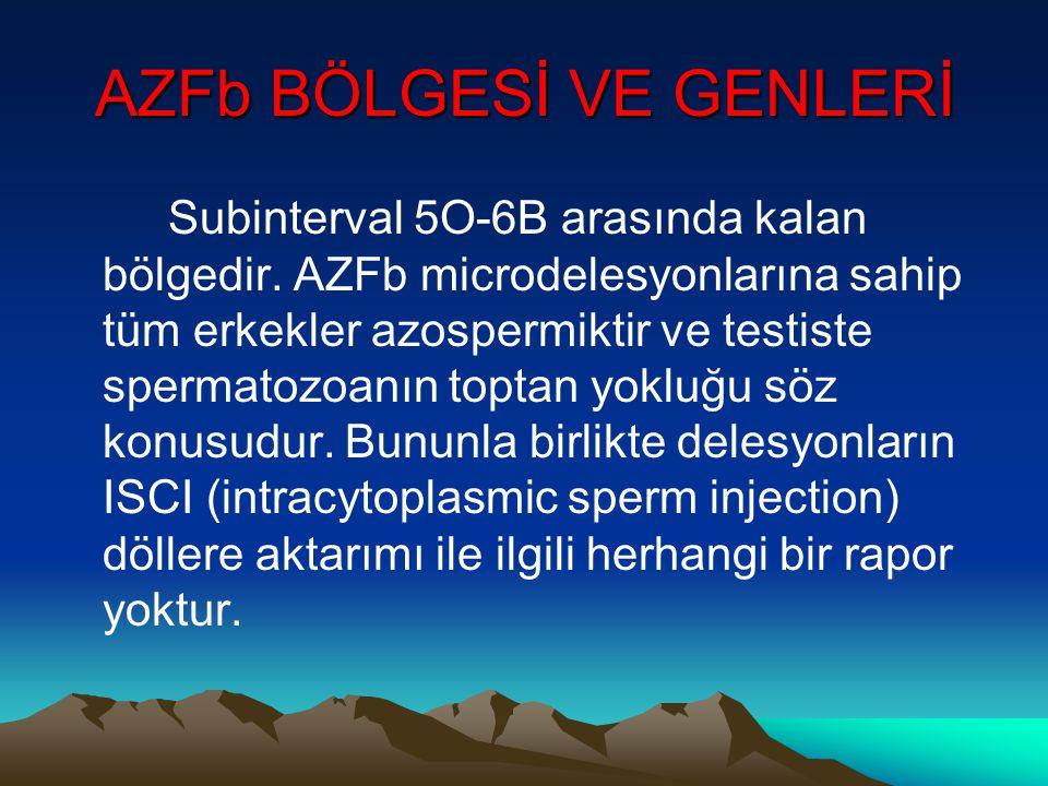 AZFb BÖLGESİ VE GENLERİ Subinterval 5O-6B arasında kalan bölgedir. AZFb microdelesyonlarına sahip tüm erkekler azospermiktir ve testiste spermatozoanı