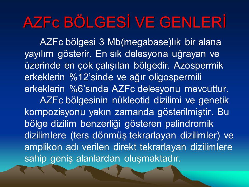 AZFc BÖLGESİ VE GENLERİ AZFc bölgesi 3 Mb(megabase)lık bir alana yayılım gösterir. En sık delesyona uğrayan ve üzerinde en çok çalışılan bölgedir. Azo