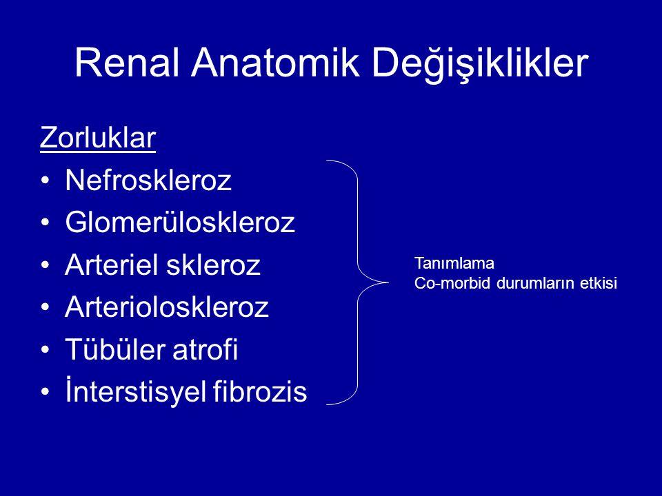 Renal Anatomik Değişiklikler Zorluklar Nefroskleroz Glomerüloskleroz Arteriel skleroz Arterioloskleroz Tübüler atrofi İnterstisyel fibrozis Tanımlama
