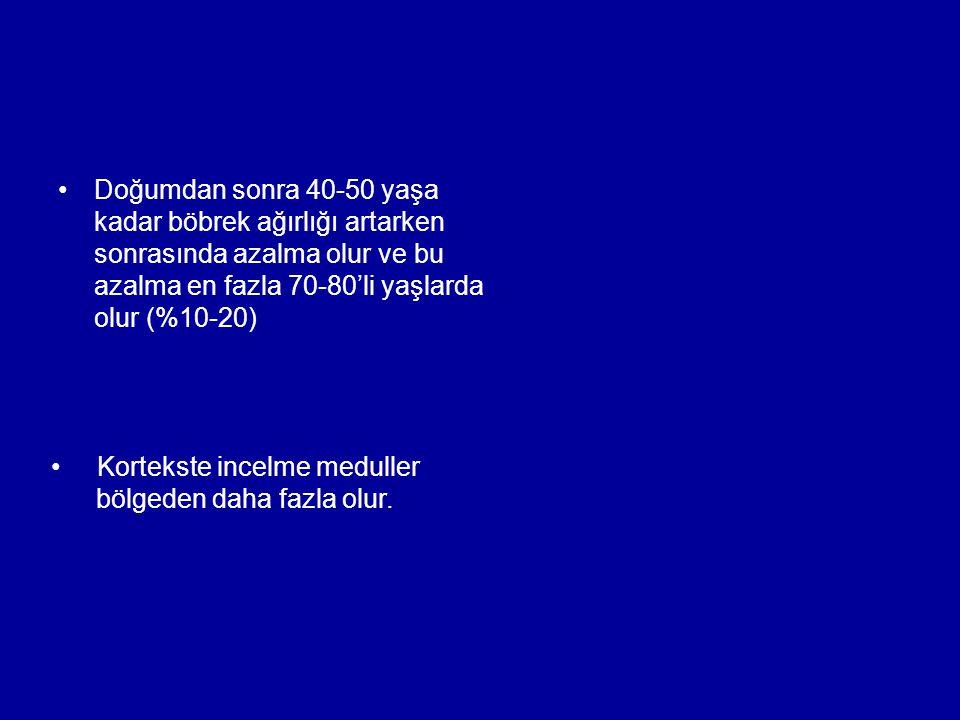 Doğumdan sonra 40-50 yaşa kadar böbrek ağırlığı artarken sonrasında azalma olur ve bu azalma en fazla 70-80'li yaşlarda olur (%10-20) Kortekste incelm