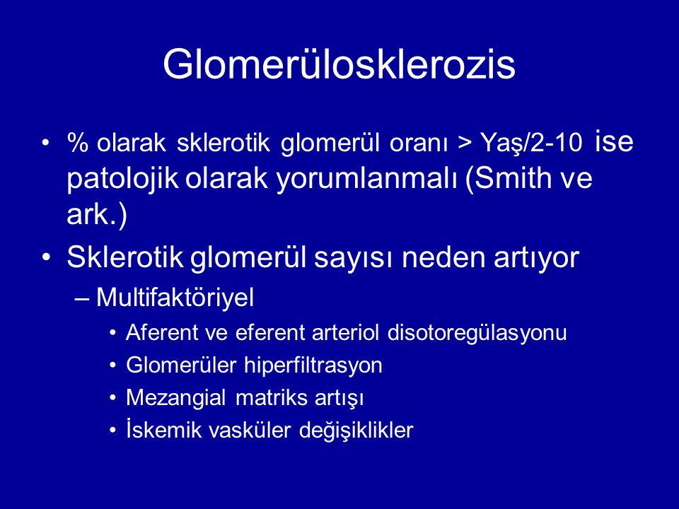Glomerülosklerozis % olarak sklerotik glomerül oranı > Yaş/2-10 ise patolojik olarak yorumlanmalı (Smith ve ark.) Sklerotik glomerül sayısı neden artı