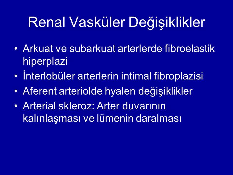 Renal Vasküler Değişiklikler Arkuat ve subarkuat arterlerde fibroelastik hiperplazi İnterlobüler arterlerin intimal fibroplazisi Aferent arteriolde hy
