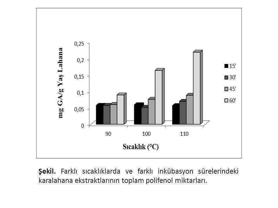 Şekil. Farklı sıcaklıklarda ve farklı inkübasyon sürelerindeki karalahana ekstraktlarının toplam polifenol miktarları.