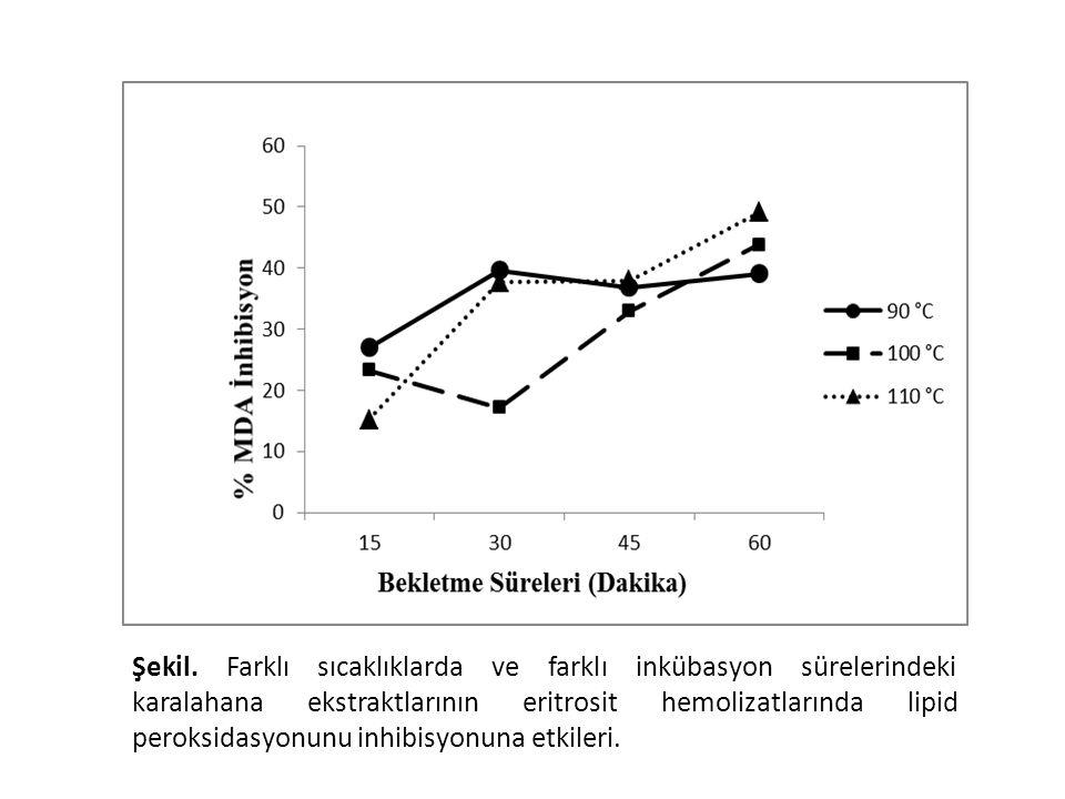 Şekil. Farklı sıcaklıklarda ve farklı inkübasyon sürelerindeki karalahana ekstraktlarının eritrosit hemolizatlarında lipid peroksidasyonunu inhibisyon