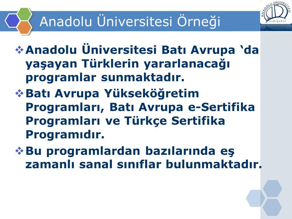 Anadolu Üniversitesi Örneği  Anadolu Üniversitesi Batı Avrupa 'da yaşayan Türklerin yararlanacağı programlar sunmaktadır.  Batı Avrupa Yükseköğretim