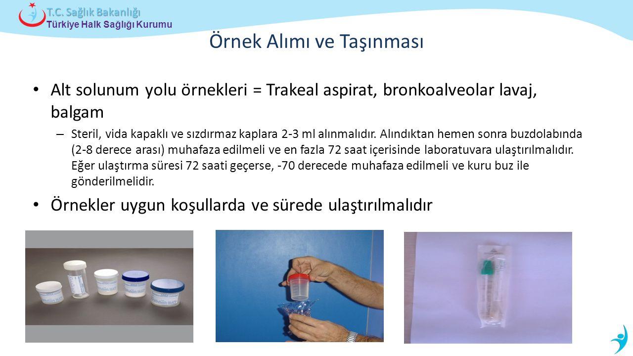 Türkiye Halk Sağlığı Kurumu T.C. Sağlık Bakanlığı Örnek Alımı ve Taşınması Alt solunum yolu örnekleri = Trakeal aspirat, bronkoalveolar lavaj, balgam