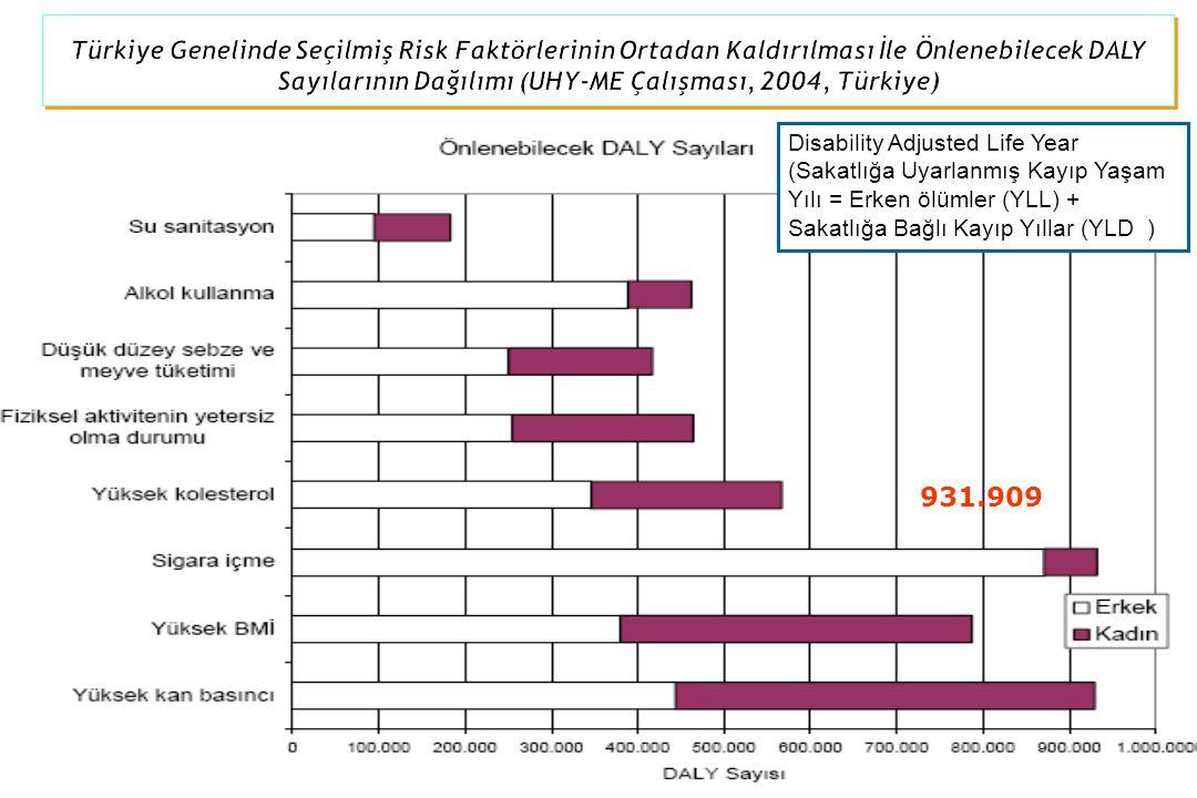 931.909 Disability Adjusted Life Year (Sakatlığa Uyarlanmış Kayıp Yaşam Yılı = Erken ölümler (YLL) + Sakatlığa Bağlı Kayıp Yıllar (YLD )