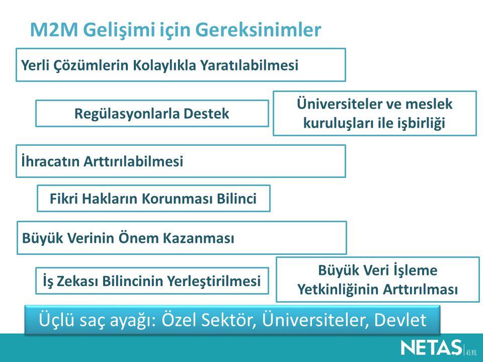 Üniversiteler ve meslek kuruluşları ile işbirliği Regülasyonlarla Destek Yerli Çözümlerin Kolaylıkla Yaratılabilmesi M2M Gelişimi için Gereksinimler Üçlü saç ayağı: Özel Sektör, Üniversiteler, Devlet İhracatın Arttırılabilmesi Fikri Hakların Korunması Bilinci Büyük Verinin Önem Kazanması İş Zekası Bilincinin Yerleştirilmesi Büyük Veri İşleme Yetkinliğinin Arttırılması