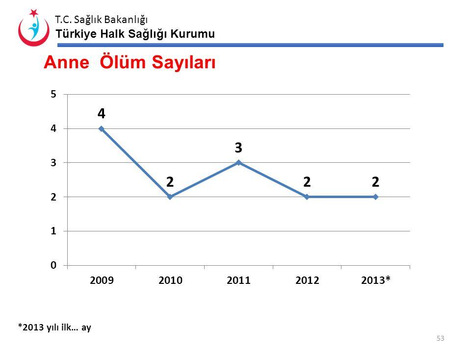 T.C. Sağlık Bakanlığı Türkiye Halk Sağlığı Kurumu 52 ANNE ÖLÜMLERİ İLTÜRKİYE 2009 Hedef Nüfus 1.308.438 Toplam Anne Ölüm Sayısı 241 Önlenebilir Anne Ö