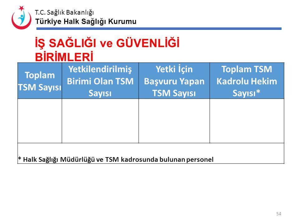 T.C. Sağlık Bakanlığı Türkiye Halk Sağlığı Kurumu 53 Anne Ölüm Sayıları *2013 yılı ilk… ay