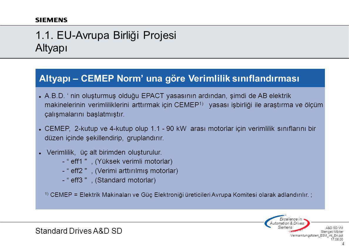Standard Drives A&D SD A&D SD VM Stengel/ Mölter Vermarktungsfolien_ESM_int_En.ppt 17.08.00 5 Excellencein Automation&Drives: Siemens Motor plakası – Alüminyum gövde Motor plakası – Döküm gövde 2.1.