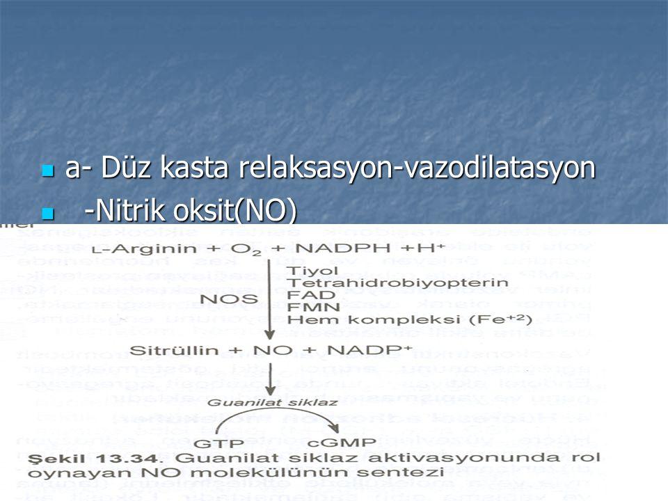 a- Düz kasta relaksasyon-vazodilatasyon a- Düz kasta relaksasyon-vazodilatasyon -Nitrik oksit(NO) -Nitrik oksit(NO)