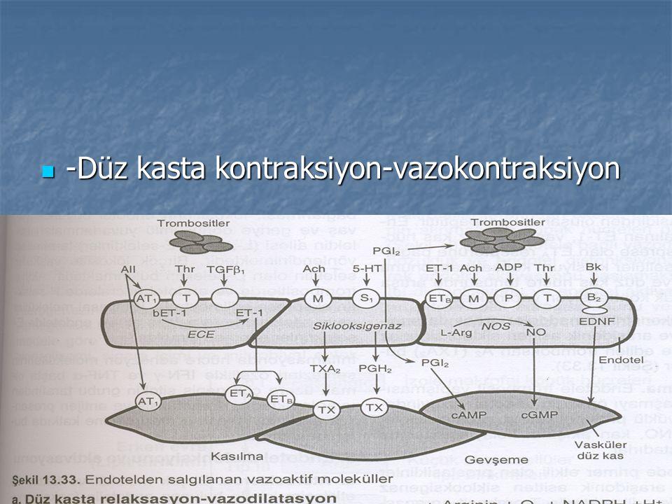 -Düz kasta kontraksiyon-vazokontraksiyon -Düz kasta kontraksiyon-vazokontraksiyon