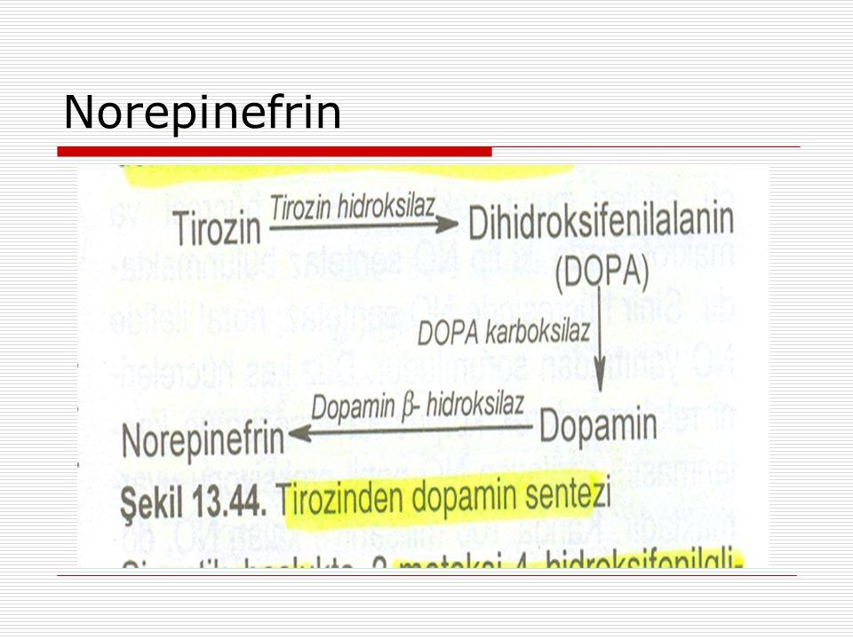 Norepinefrin
