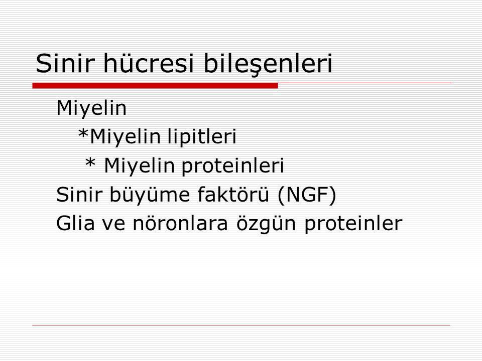Sinir hücresi bileşenleri Miyelin *Miyelin lipitleri * Miyelin proteinleri Sinir büyüme faktörü (NGF) Glia ve nöronlara özgün proteinler