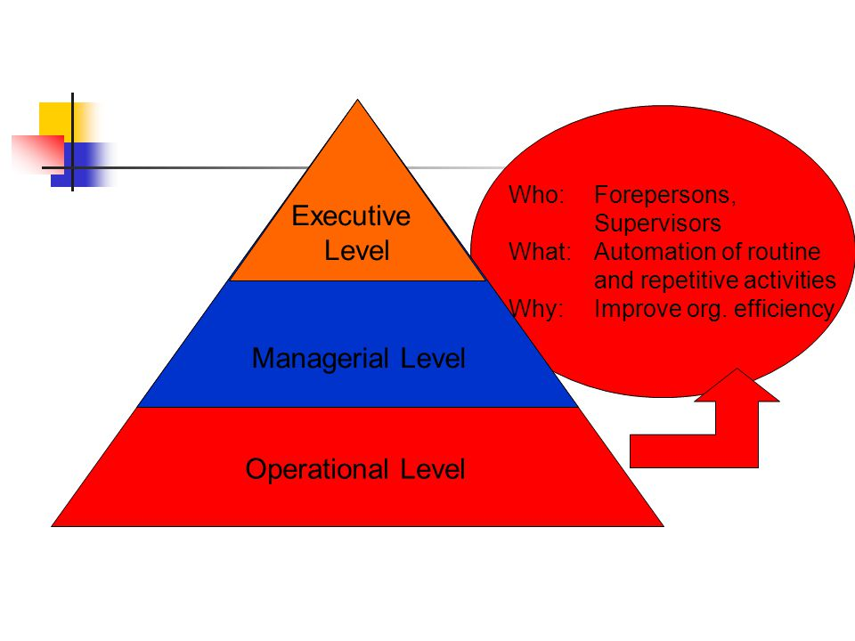 Who: Middle & Functional Managers What: Automation of monitoring and controlling of operational activities Why:Improve org.