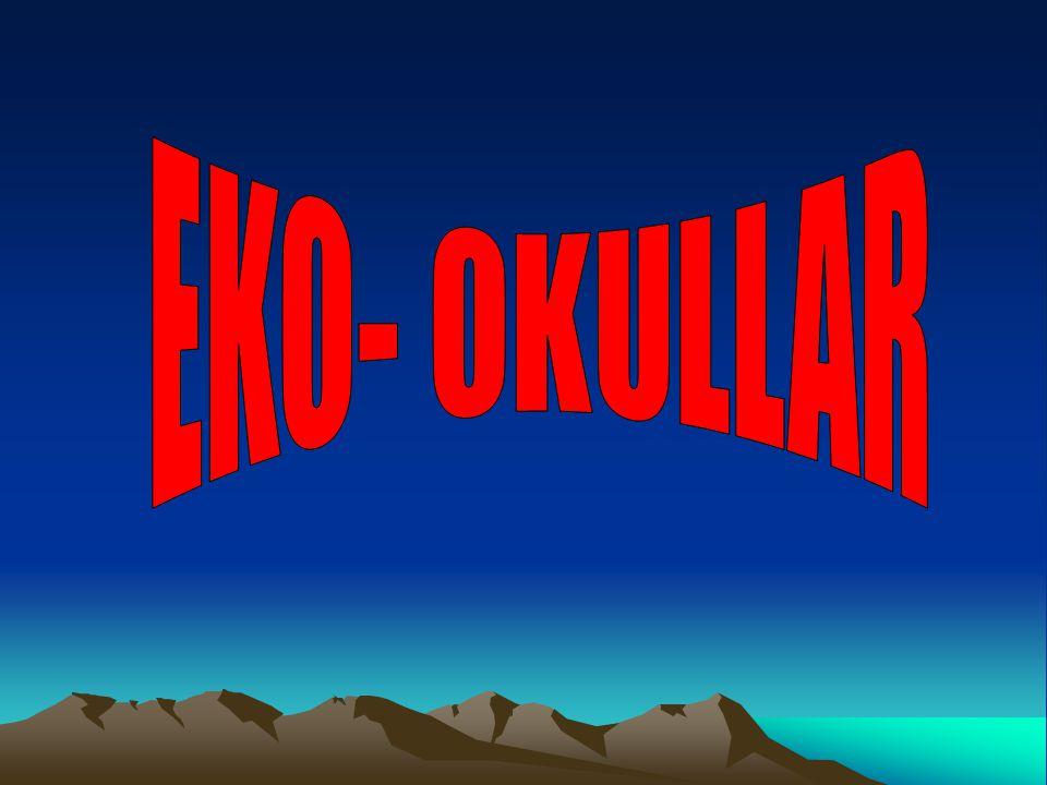 Eko- okullar; ilköğretim okullarında öğrencilere çevre bilinci kazandırmak amacıyla uygulanan uluslar arası bir projedir.