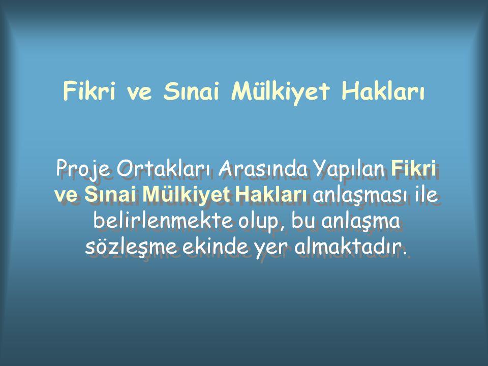 Fikri ve Sınai Mülkiyet Hakları Proje Ortakları Arasında Yapılan Fikri ve Sınai Mülkiyet Hakları anlaşması ile belirlenmekte olup, bu anlaşma sözleşme ekinde yer almaktadır.
