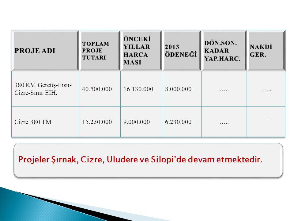 Projeler Şırnak, Cizre, Uludere ve Silopi'de devam etmektedir.