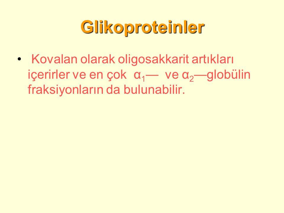 Glikoproteinler Kovalan olarak oligosakkarit artıkları içerirler ve en çok α 1 — ve α 2 —globülin fraksiyonların da bulunabilir.