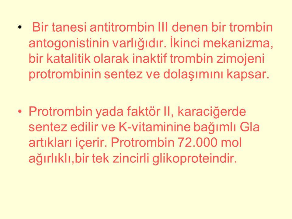 Bir tanesi antitrombin III denen bir trombin antogonistinin varlığıdır.