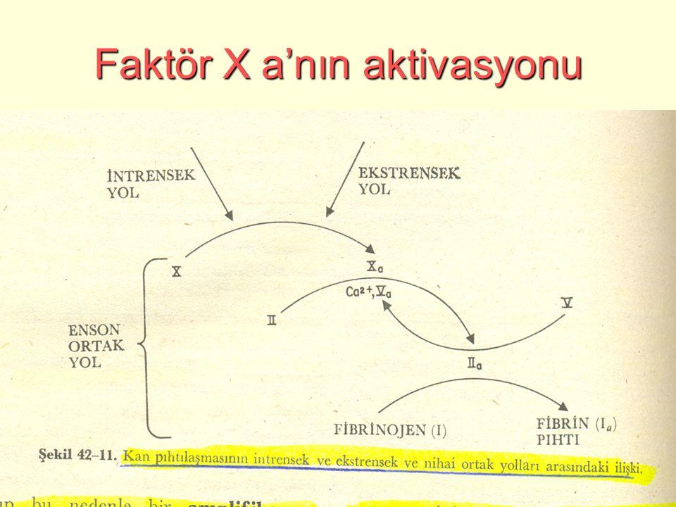Faktör X a'nın aktivasyonu