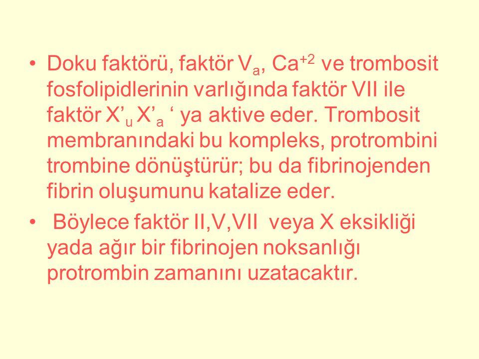 Doku faktörü, faktör V a, Ca +2 ve trombosit fosfolipidlerinin varlığında faktör VII ile faktör X' u X' a ' ya aktive eder.