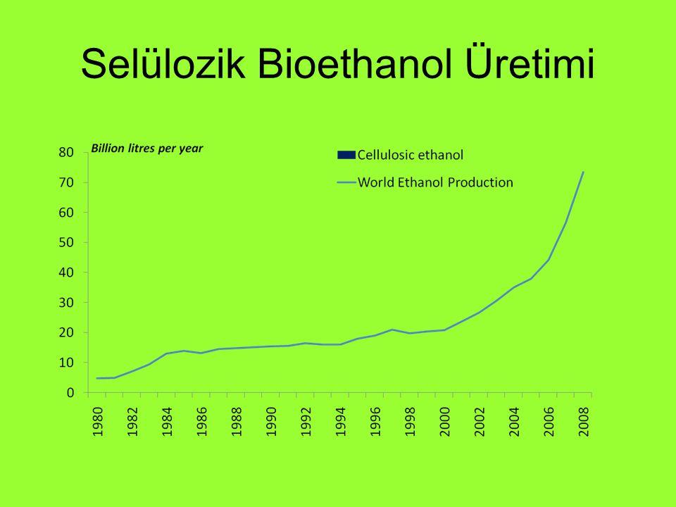 Selülozik Bioethanol Üretimi