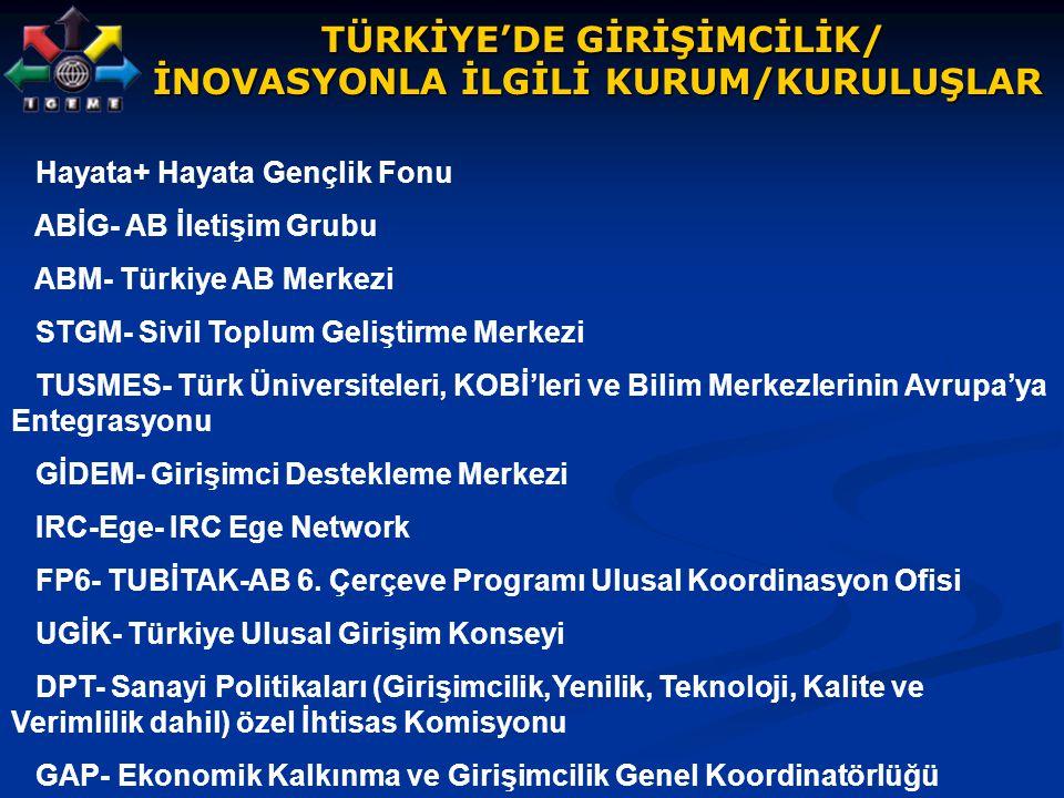 TÜRKİYE'DE GİRİŞİMCİLİK/ TÜRKİYE'DE GİRİŞİMCİLİK/ İNOVASYONLA İLGİLİ KURUM/KURULUŞLAR Hayata+ Hayata Gençlik Fonu ABİG- AB İletişim Grubu ABM- Türkiye