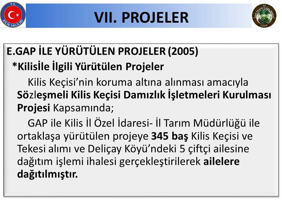 E.GAP İLE YÜRÜTÜLEN PROJELER (2005) *Kilisİle İlgili Yürütülen Projeler Kilis Keçisi'nin koruma altına alınması amacıyla Sözleşmeli Kilis Keçisi Damız