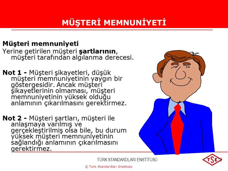 © Türk Standardları Enstitüsü TÜRK STANDARDLARI ENSTİTÜSÜ12 MÜŞTERİ MEMNUNİYETİ Müşteri memnuniyeti Yerine getirilen müşteri şartlarının, müşteri tara